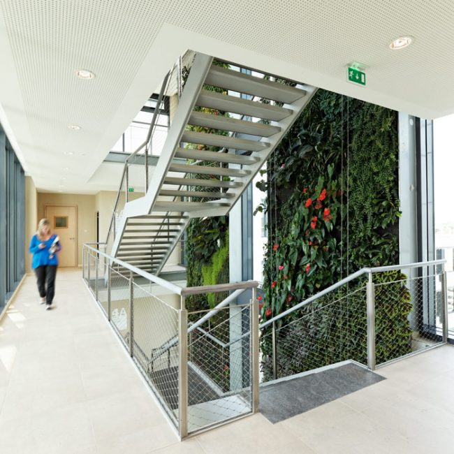 Green Office, Ateliers 115, Meudon, 2011