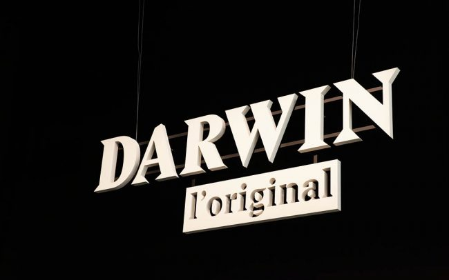 Darwin, Cité des Sciences et de l'Industrie, Projectiles, Paris, 2015